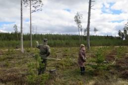 Mežsaimniecības konsultācijas meža īpašniekiem