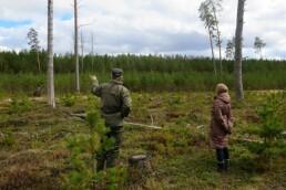 Konsultācijas meža īpašniekiem mežsaimniecības jautājumos